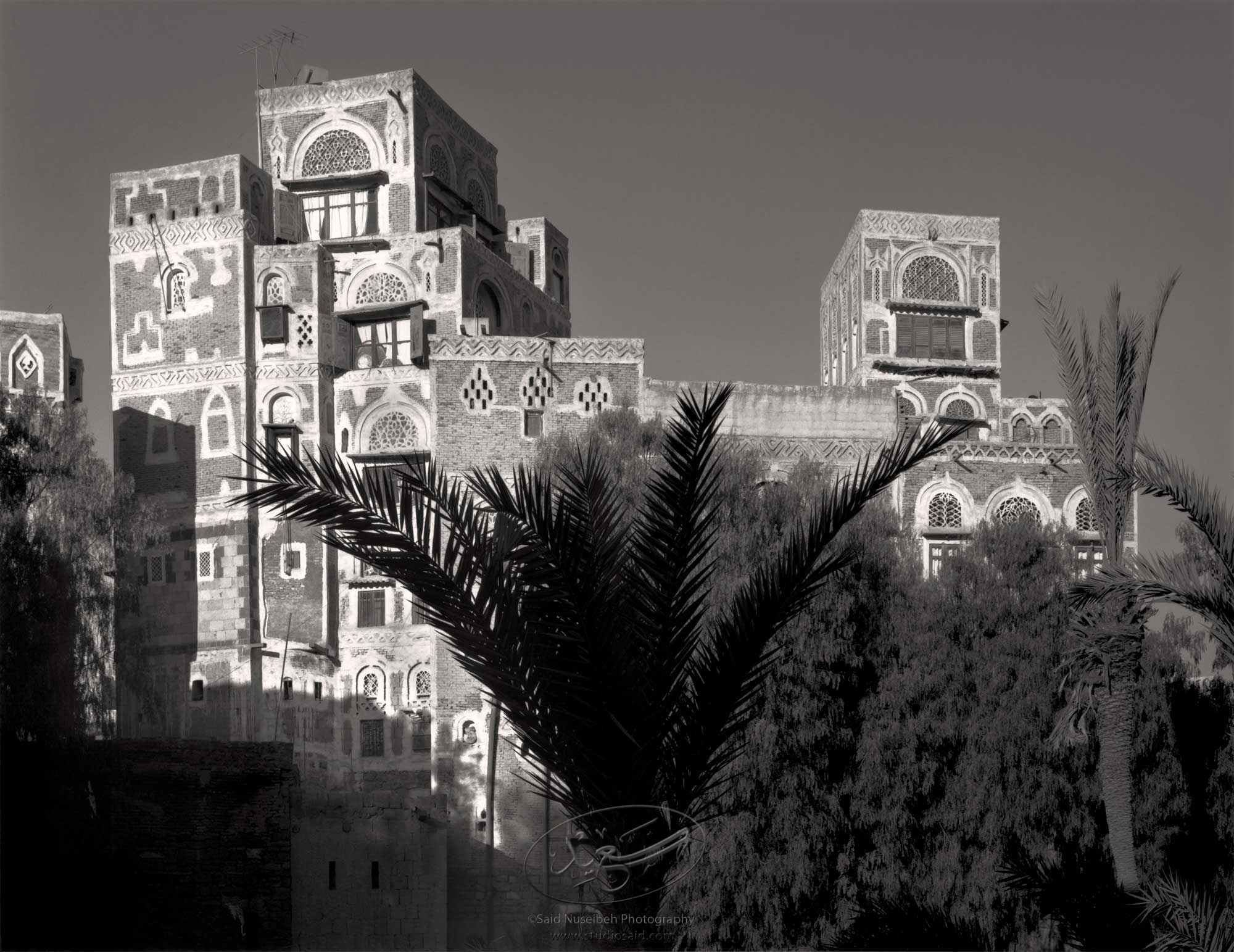 From shared community gardens, in the cnter of a circle of houses. Old City Sana'a